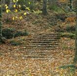Escaleras-al-otono-Vidal-Morcuende-Perez