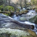 El-rio-de-la-vida-Vidal-Morcuende-Perez