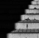 Sombra-y-luz-Manuel-Garcia-Izquierdo