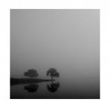 dia-de-niebla-ii-juanmavico