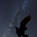 Águila-en-la-Vía-Láctea-Chuma