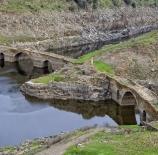 puentes-vidal