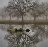reflejos-de-la-niebla-chuma