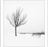 soledad-invernal-ii-nano